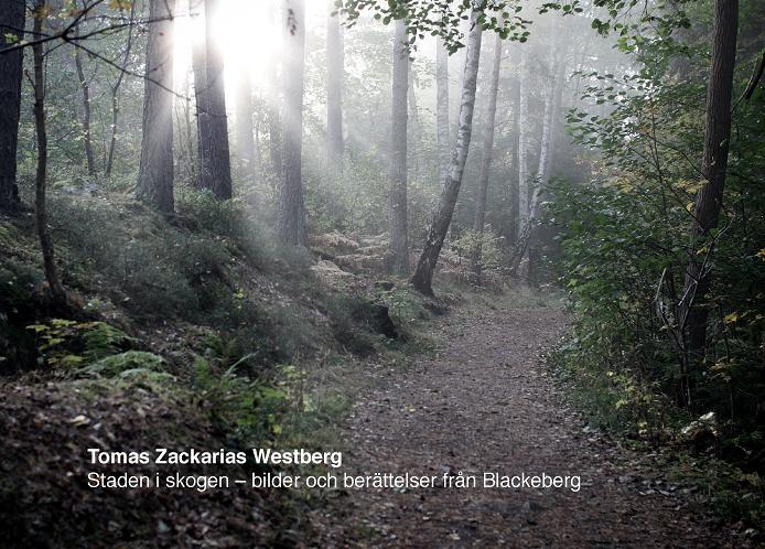 Staden i skogen : bilder och berättelser från Blackeberg av Tomas Zackarias Westberg