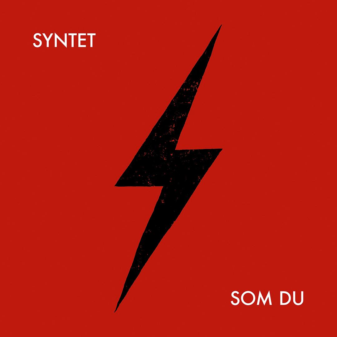 Syntet Som du / Dummare och dummare (CD)