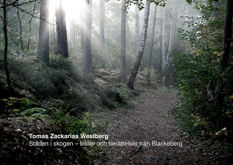Staden i skogen - bilder och berättelser från Blackeberg